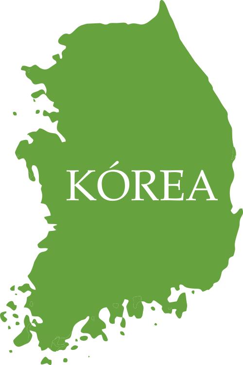Kórea TEE.SK
