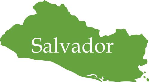Salvador TEE.SK